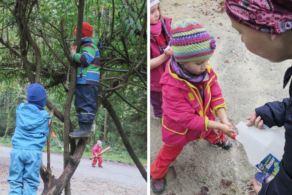 Kinder lernen spielerisch im Wald