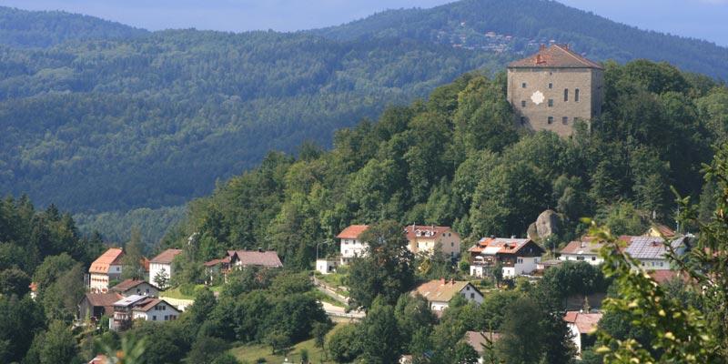 Blick auf die Saldenburg